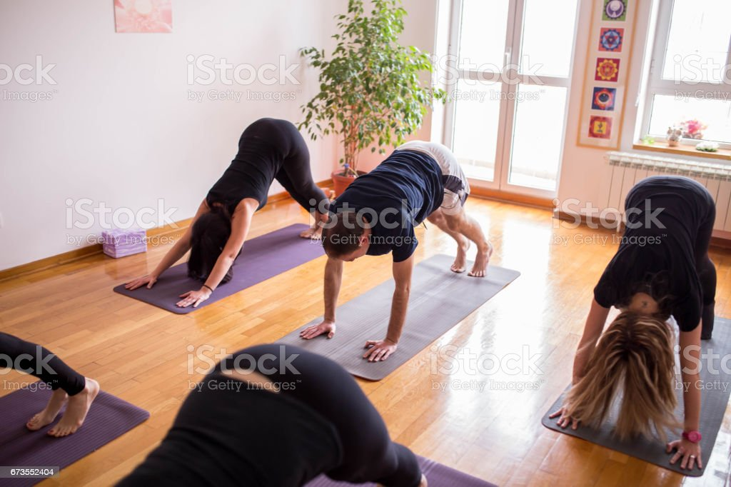 Group of people doing yoga together. Downward-Facing Dog royalty-free stock photo
