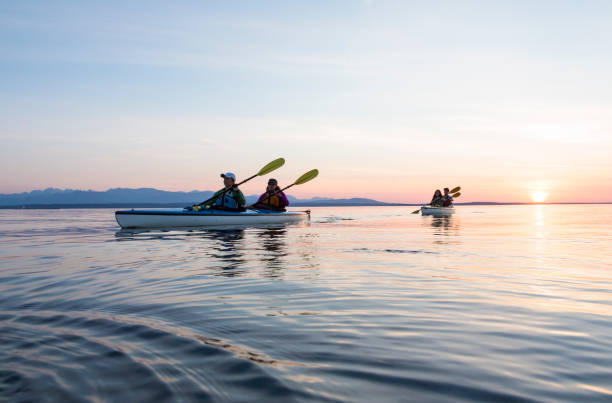 Group of people friends sea kayaking together at sunset in beautiful nature. Active outdoor adventure sports. Group of people friends sea kayaking together at sunset in beautiful nature. Active outdoor adventure sports. puget sound stock pictures, royalty-free photos & images
