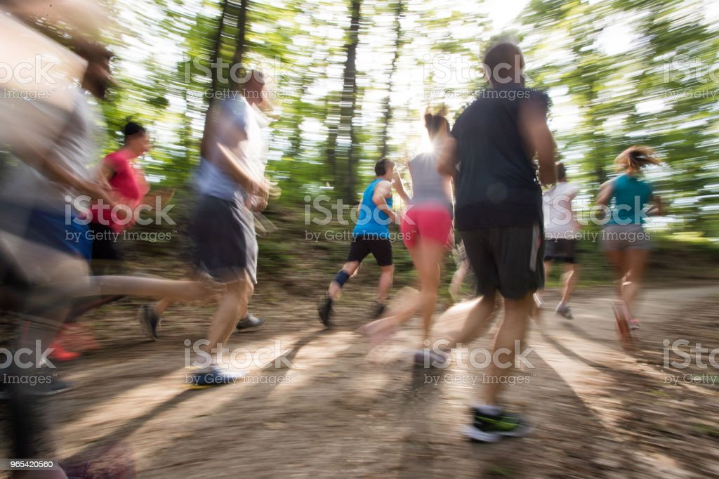 Group of people in blurred motion running a marathon in nature. zbiór zdjęć royalty-free
