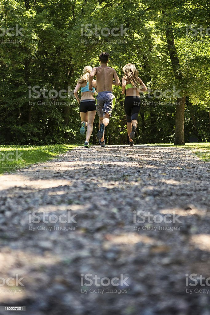 Group Of People Jogging Together royalty-free stock photo