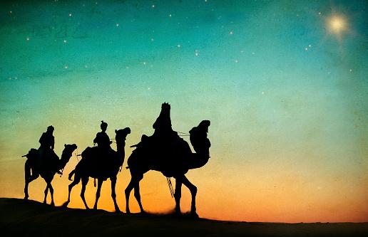 Grupo De Pessoas Dirigindo Camelo Isolado No Fundo - Fotografias de stock e mais imagens de Andar