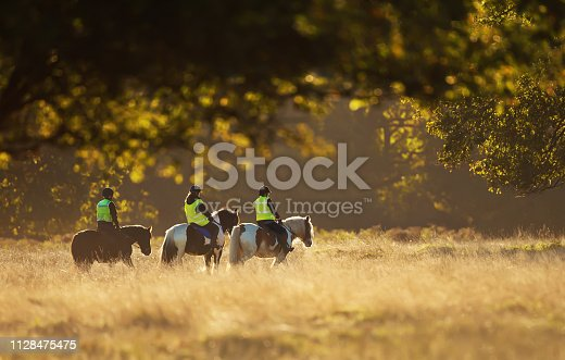 istock Group of people riding horses 1128475475