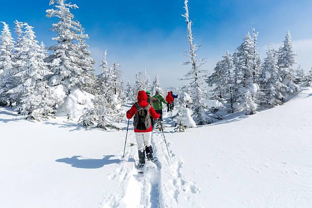 Group of people snowshoeing in winter forest picture id518474353?b=1&k=6&m=518474353&s=612x612&w=0&h=k9dvnyw htokrnoapu7otfak94aburhfryzfsw 7igk=