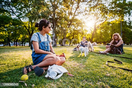 Group of people with their dogs enjoying in sunny day in public park.
