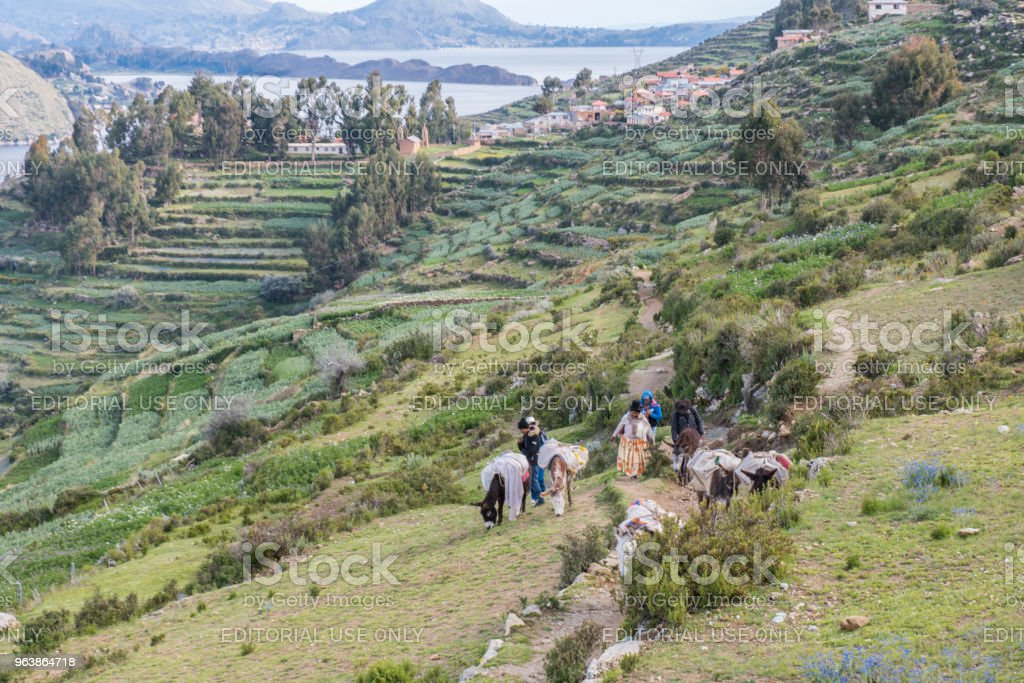 Group of people with mules at Isla del Sol (Island of the Sun), lake Titicaca, Bolivia. - Royalty-free Agriculture Stock Photo