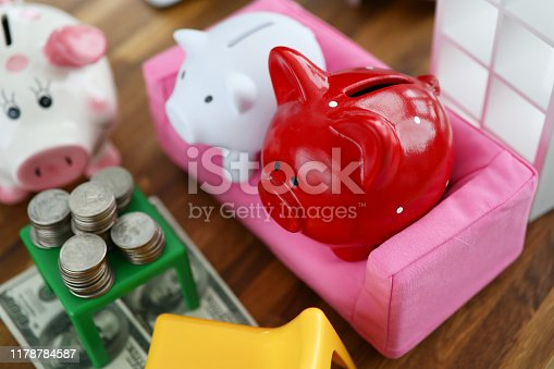 Group of piggy bank sit on sofa in house doll background. Family budget concept.