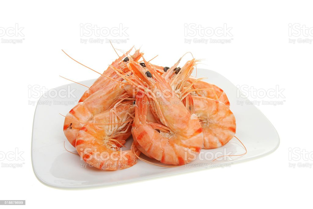 Group of prawns stock photo