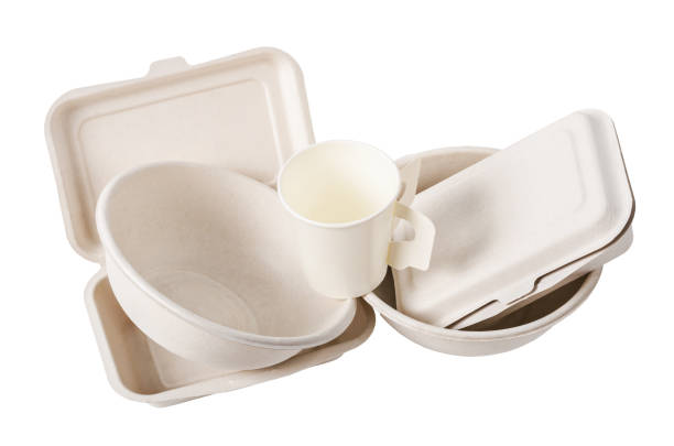 group of product made from bagasse - biodegradabile foto e immagini stock