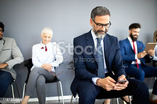 669854210 istock photo Group of proffesional business people communicating in modern office 1187353894