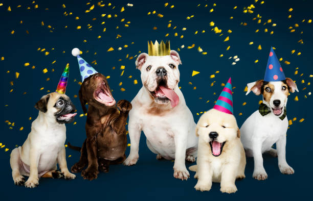 Group of puppies celebrating a new year Group of puppies celebrating a new year protruding stock pictures, royalty-free photos & images