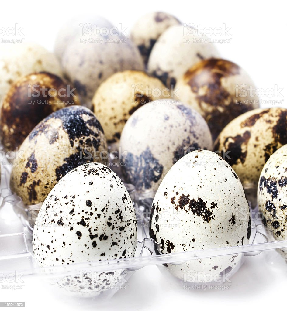 Group of quail eggs in a plastic container, isolated royalty-free stock photo