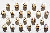 ウズラの卵のグループは、ハードの影に日光の行に均等に広げて