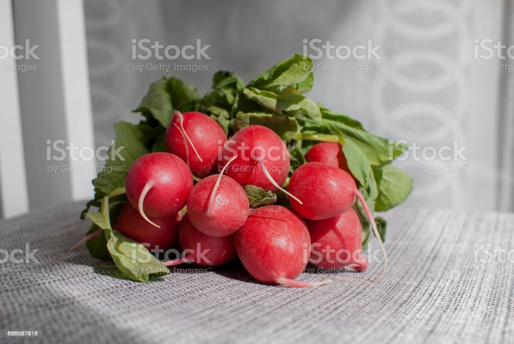 Group of  radish royalty-free stock photo