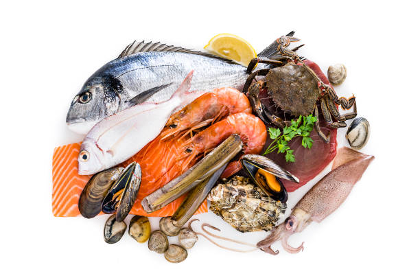 Group of raw seafood isolated on white background Food: group of healthy fresh raw seafood shot from above on white background. The composition includes fish, salmon steak, tuna steak, crab, shrimps, razor clams, mussels, oyster, squid and various clams. Predominant colors are red, brown and white. XXXL 42Mp studio photo taken with Sony A7rii and Sony FE 90mm f2.8 macro G OSS lens mollusk stock pictures, royalty-free photos & images