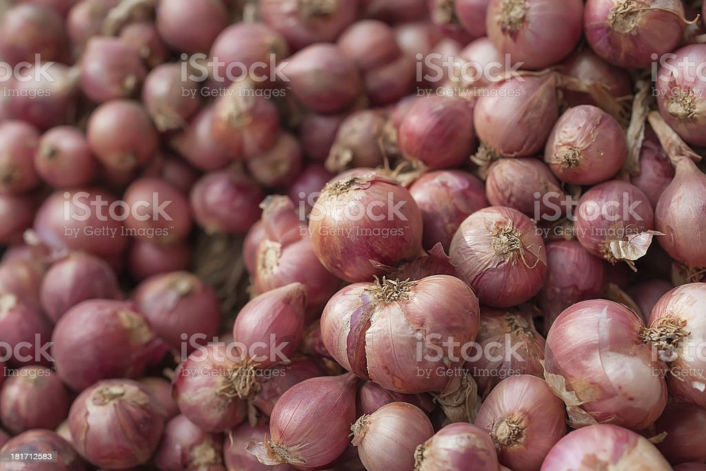 Group of red onion royalty-free stock photo
