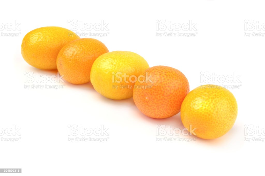 Group of ripe kumquat on plate over white background foto stock royalty-free