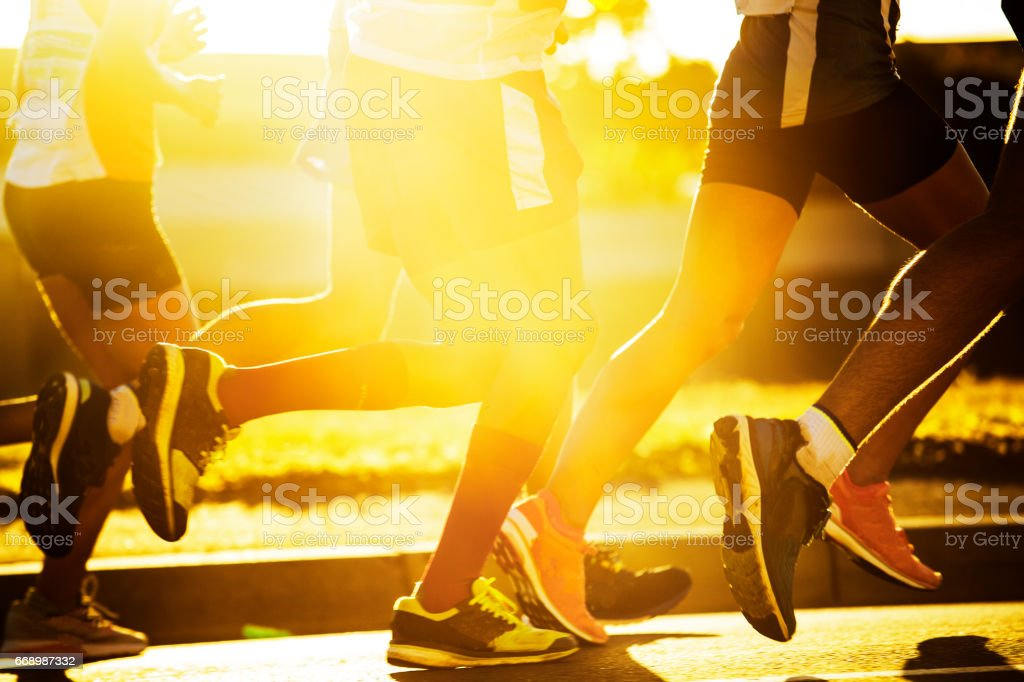 Group of road runner's legs with sun behind stock photo