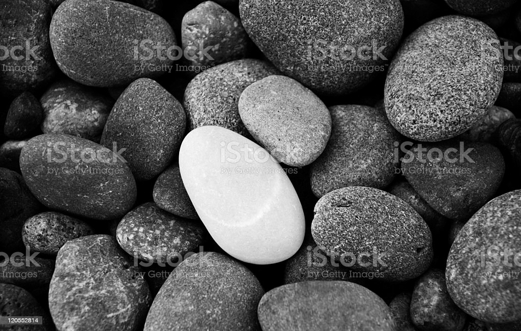 Group of rocks that are grey and one white rock on top royalty-free stock photo