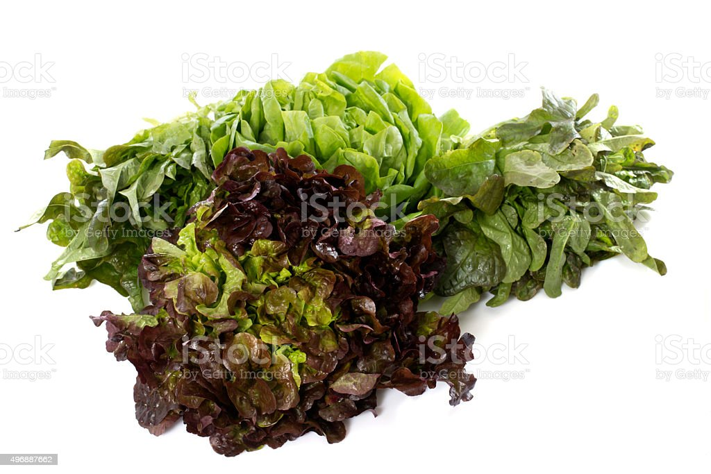 Groupe de salade - Photo