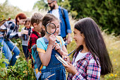 istock Group of school children with teacher on field trip in nature, learning science. 1183803820