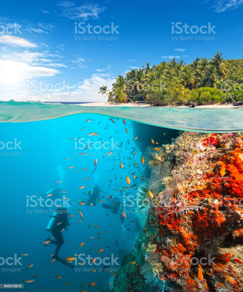 Group of scuba divers exploring coral reef stock photo