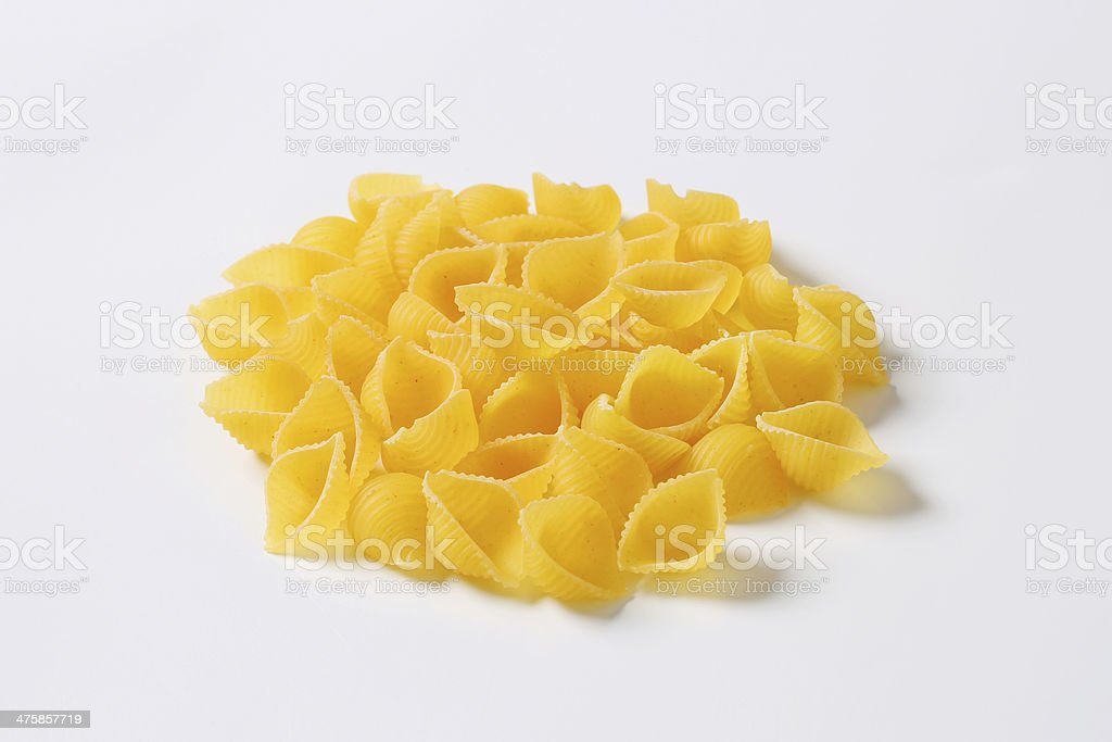 Group of seashell pasta royalty-free stock photo