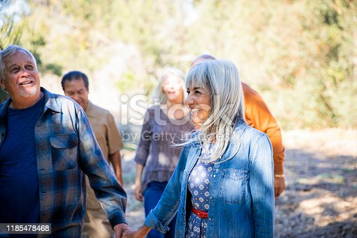 1051098428istockphoto Group of senior friends exploring outdoors 1185478468