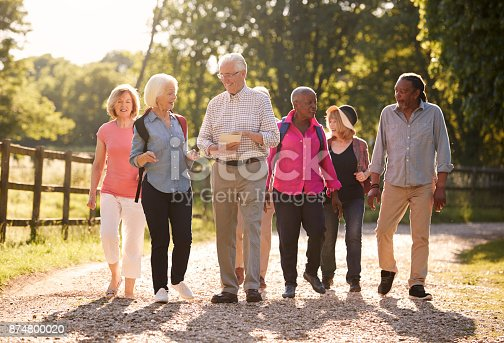 istock Group Of Senior Friends Hiking In Countryside 874800020