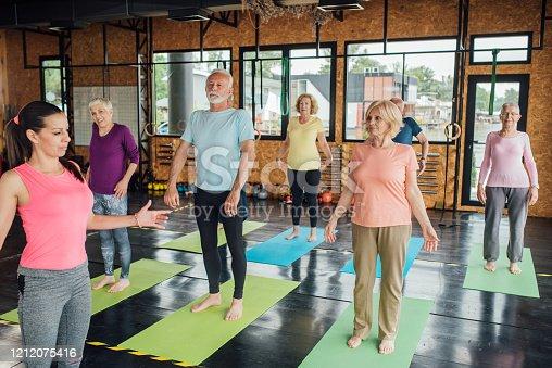 Group of seniors attending a yoga class.