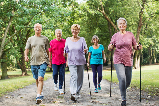 Group of seniors walking in park Group of active seniors walking on road through park in morning nordic walking stock pictures, royalty-free photos & images