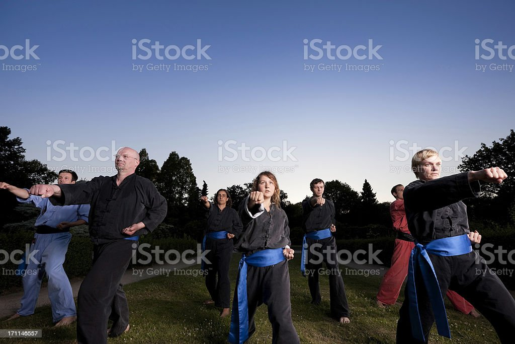 group of seven fighters royalty-free stock photo