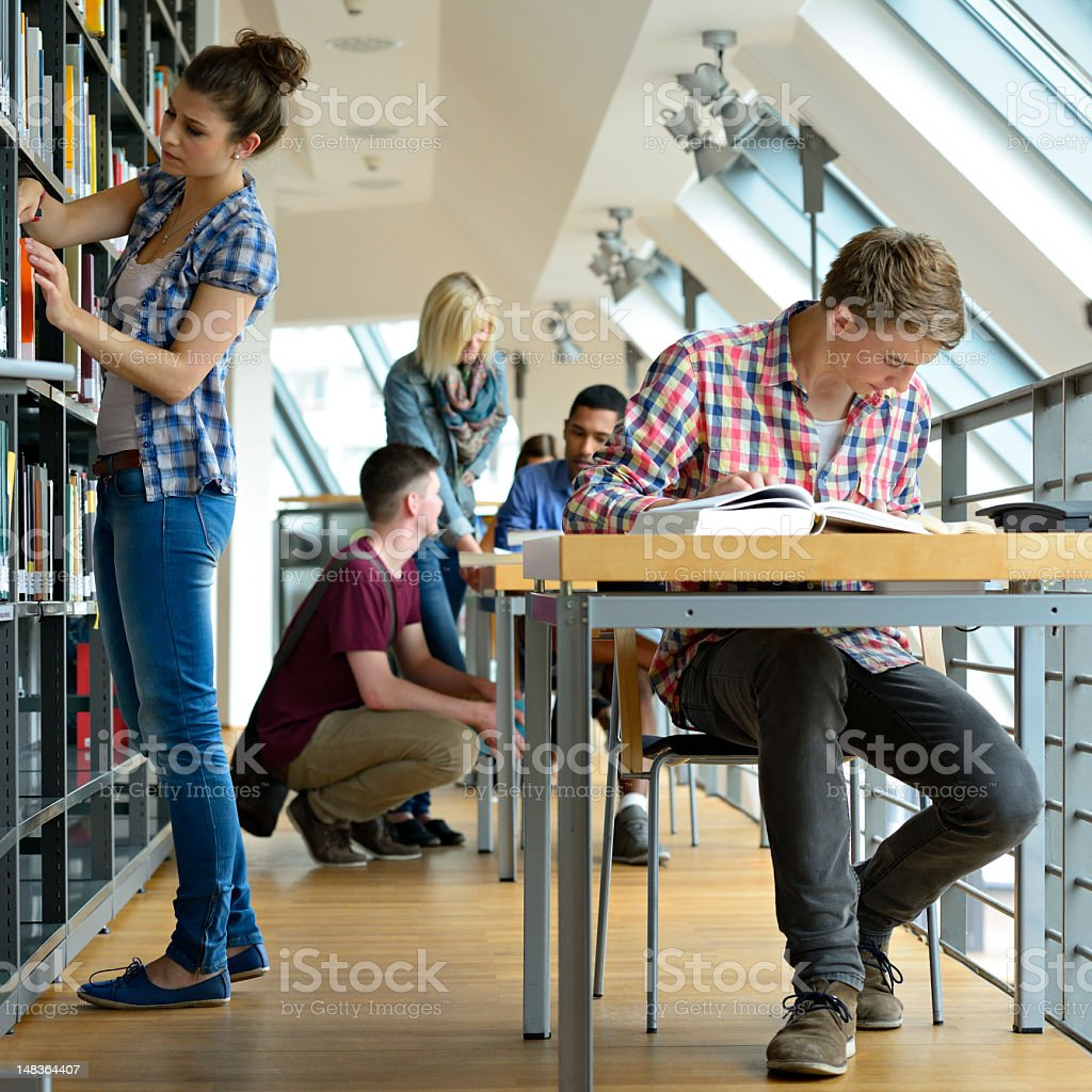 Group of Students Studying in a Library royalty-free stock photo