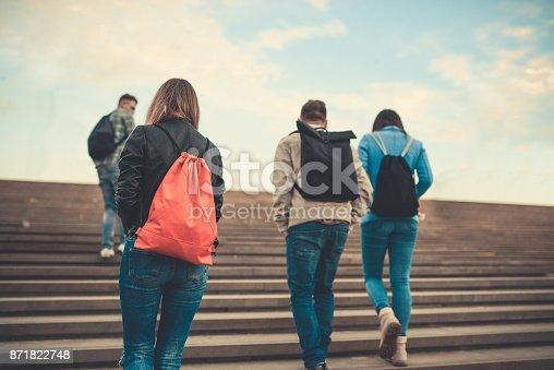 872670290istockphoto Group of Students with Backpacks Walking to School 871822748