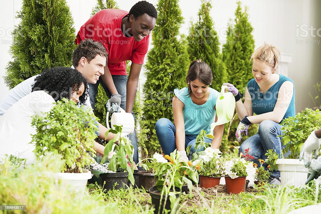 Group of teenage friends gardening. royalty-free stock photo