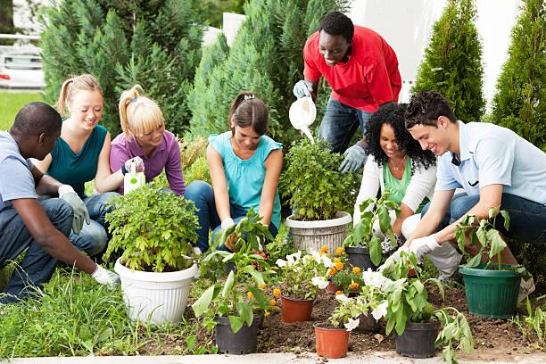 grupo de amigos adolescentes jardinagem. - vida de estudante - fotografias e filmes do acervo