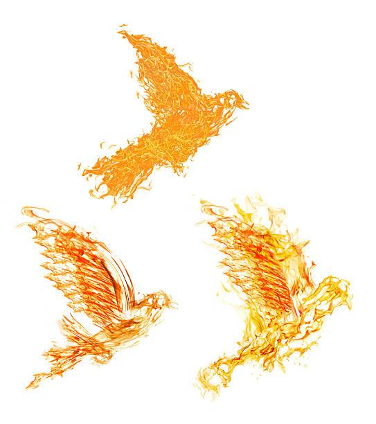 Grupo de tres llama vuelo palomas en blanco - foto de stock