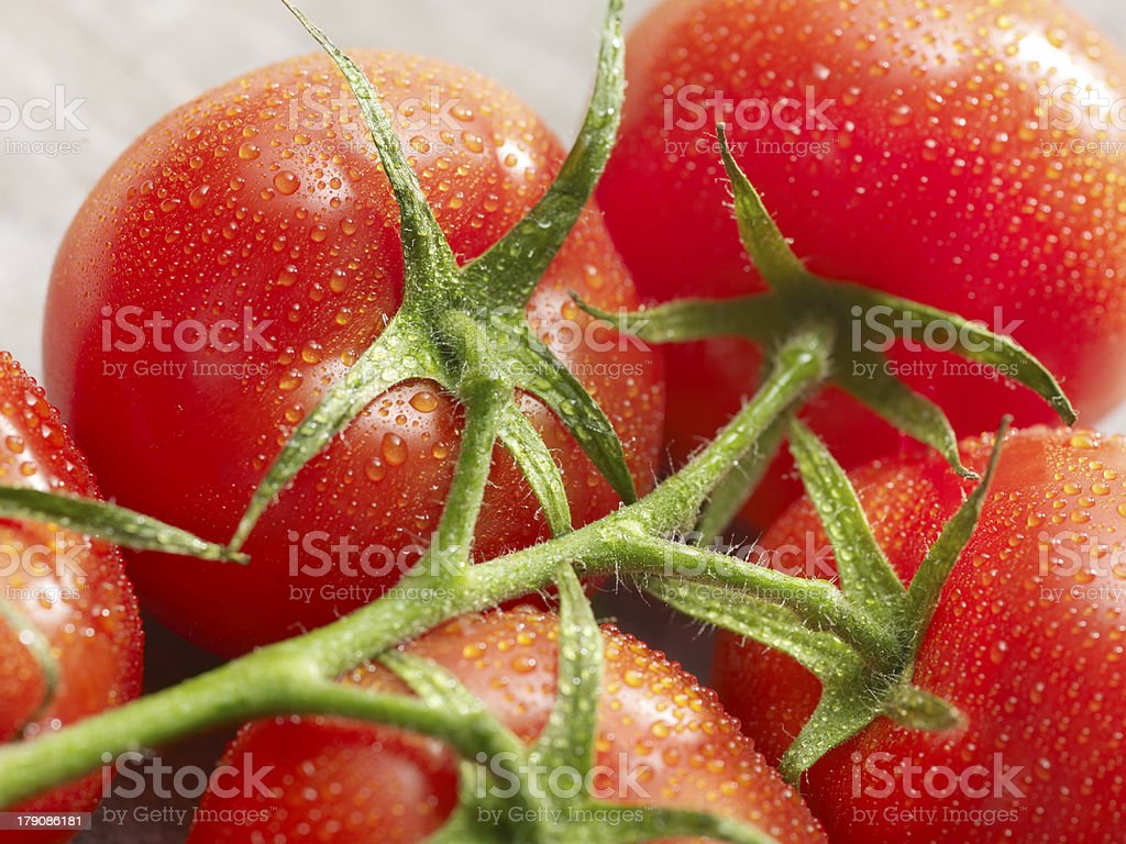 group of tomatoes with drops on it royalty-free stock photo