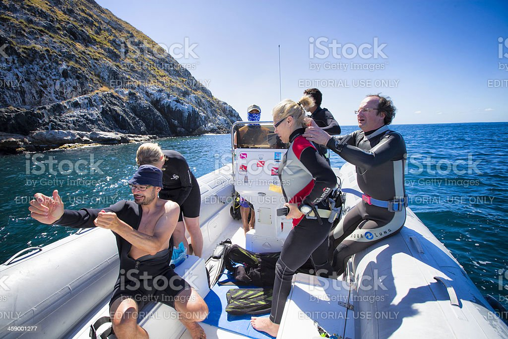 Group of tourist getting ready to diving in Los Roques stock photo
