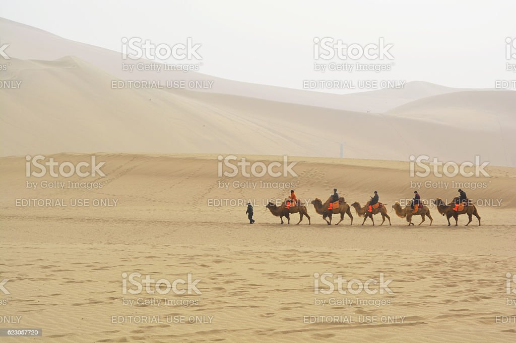 Group of tourists are riding camels in the desert stock photo