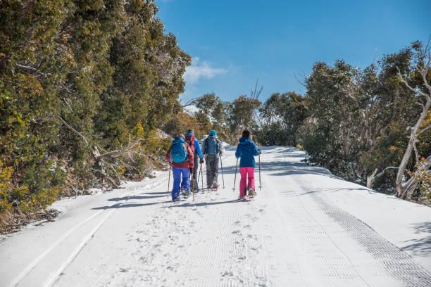 Group of tourists enjoying snow walking in Mount Buffalo National Park in Australian winter stock photo