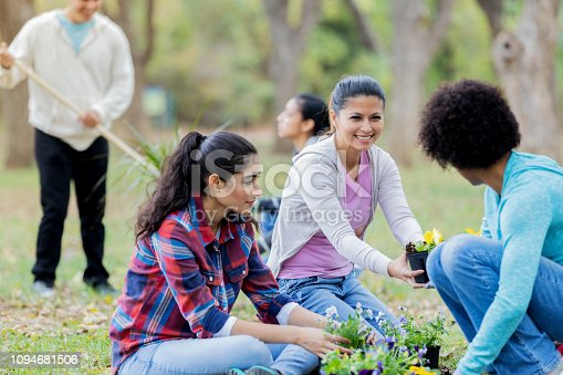 A group of women sit and crouch on the ground together to volunteer for community cleanup.  They are planting flowers.