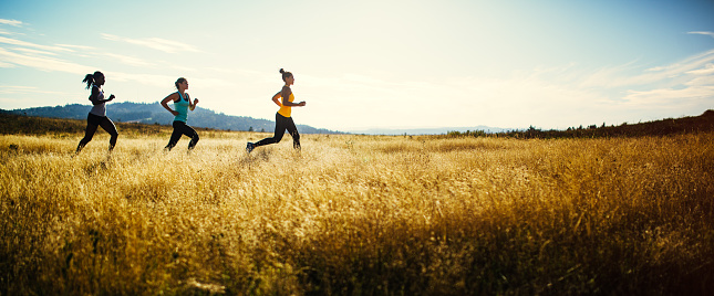A group of young adult friends runs in a pristine and vast outdoor area, the sun shining warm golden light on the scene.  They run across a large field, the grass a golden yellow color.  Shot in a minimalist style.  Depicting trail running, healthy lifestyle and exercise in the great outdoors.  Horizontal image with copy space; letterbox style.