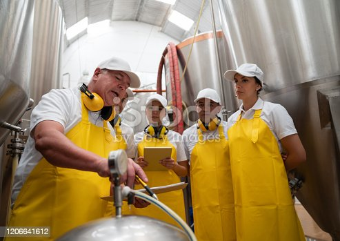 istock Group of workers in training at a brewery factory 1206641612