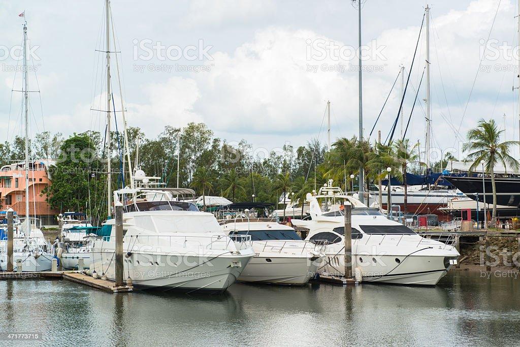 group of yachts at the marina royalty-free stock photo