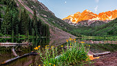 Group of yellow daisy flowers wildflowers in panoramic view of Maroon Bells lake orange sunrise in Aspen, Colorado with moon