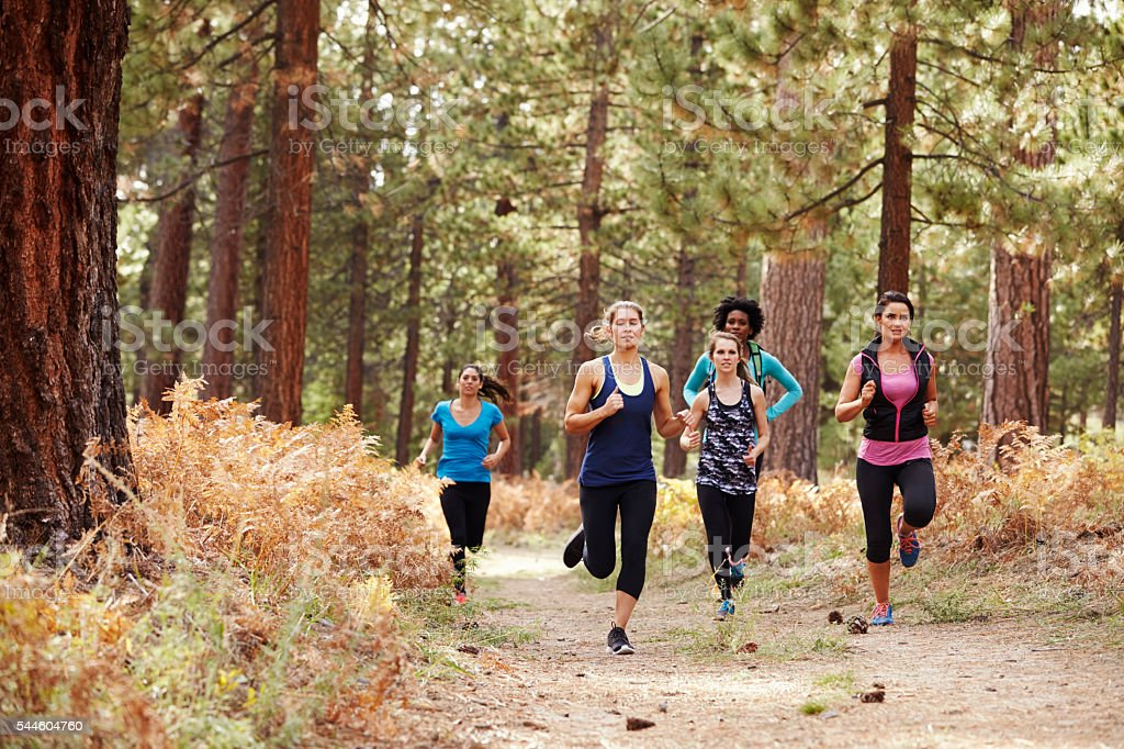 Group of young adult women running in a forest stock photo