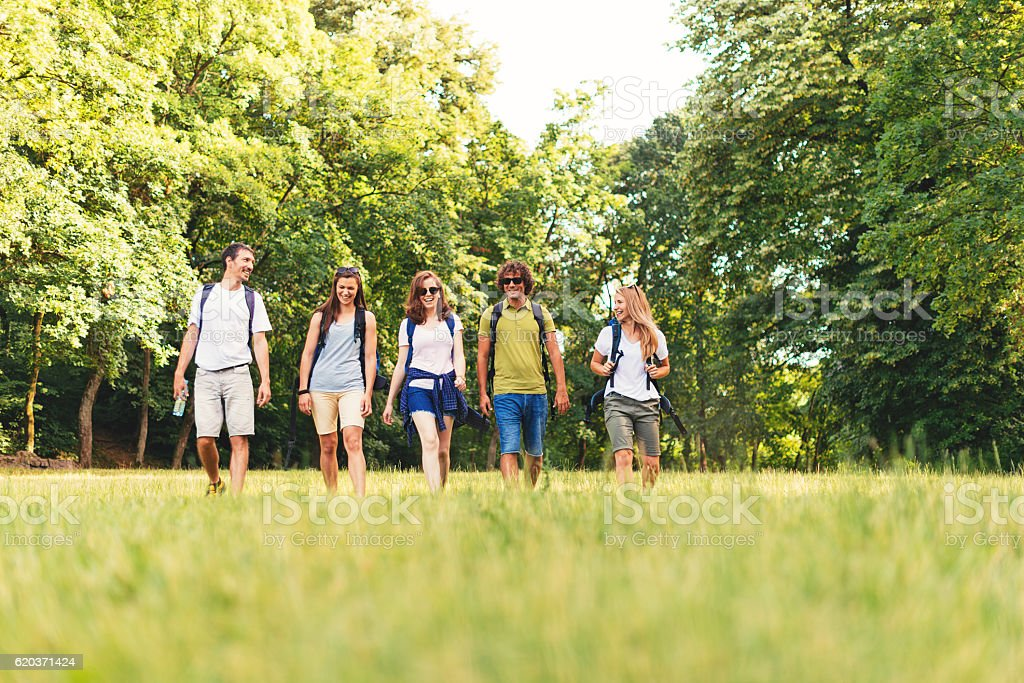 Group of young adults hiking in woods foto de stock royalty-free