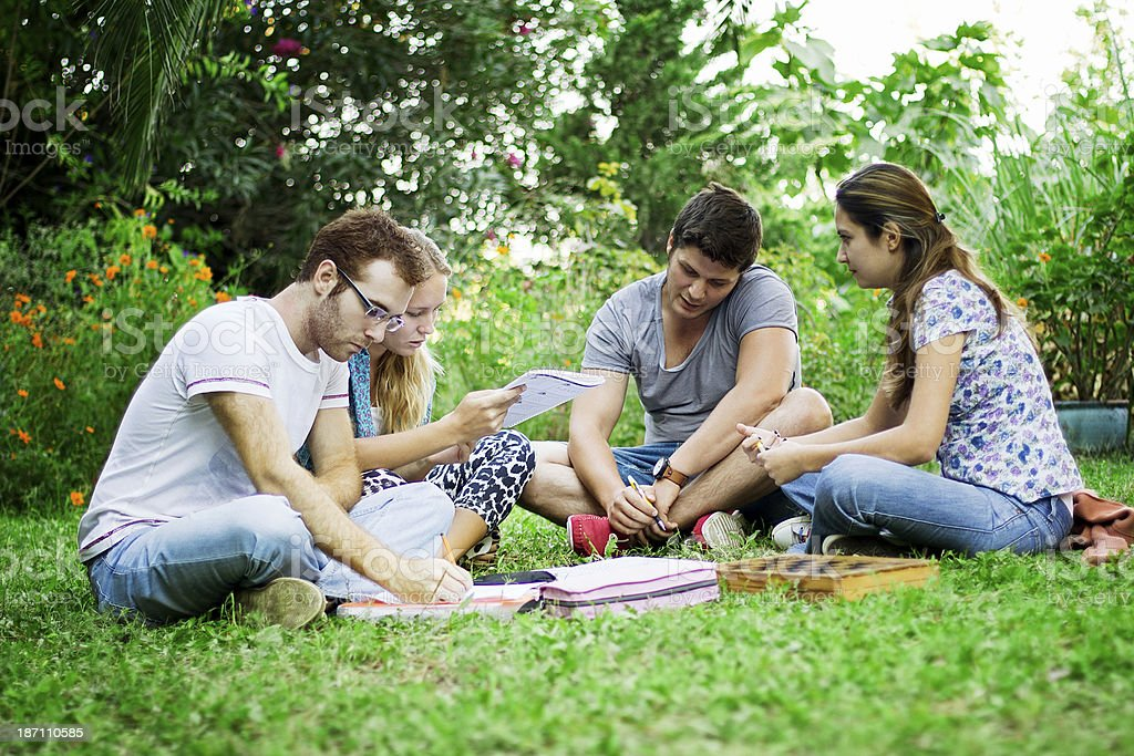 Group of young friends in park royalty-free stock photo