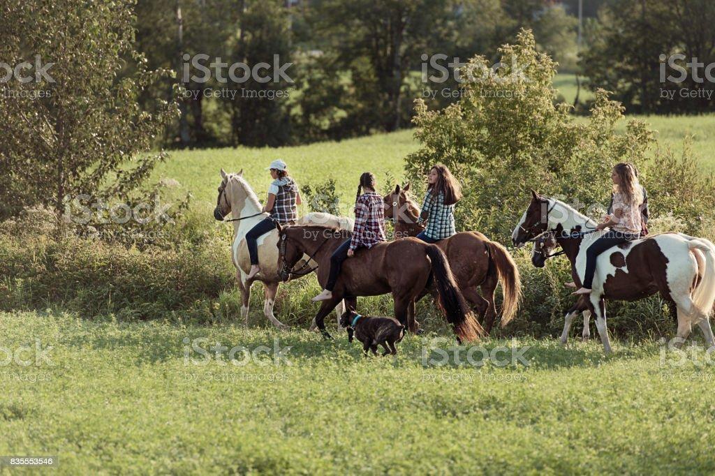 若い馬ライダーのグループ ストックフォト