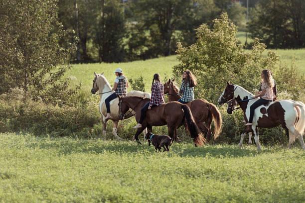 若い馬ライダーのグループ - 自然旅行 ストックフォトと画像